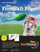 football-flyer-sell-sheet